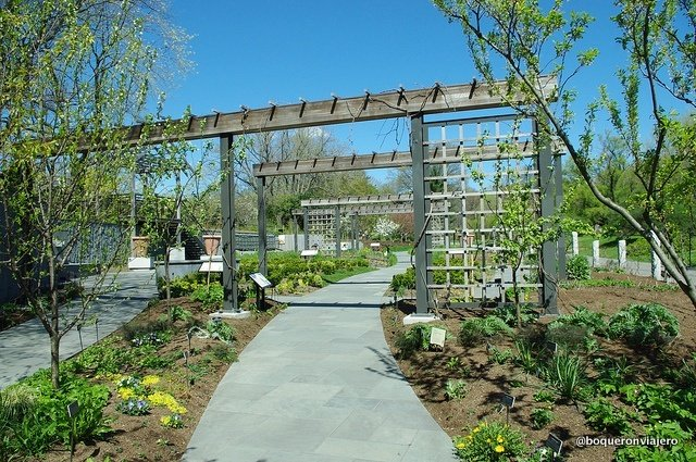 Calles del Jardín Botánico de Brooklyn
