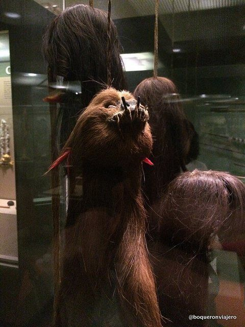 Tsansas en el Museo Americano de Historia Natural de Nueva York