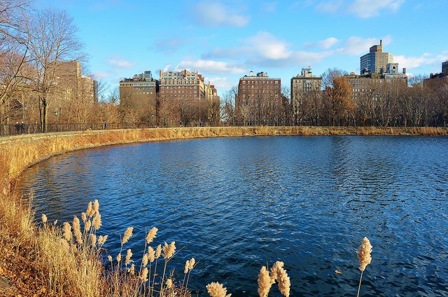 Central Park Reserva
