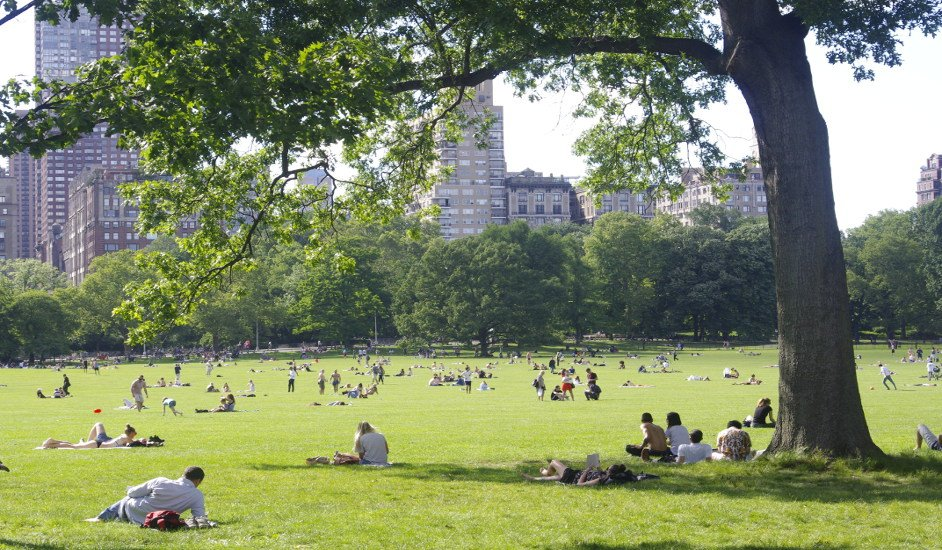 Central Park en verano