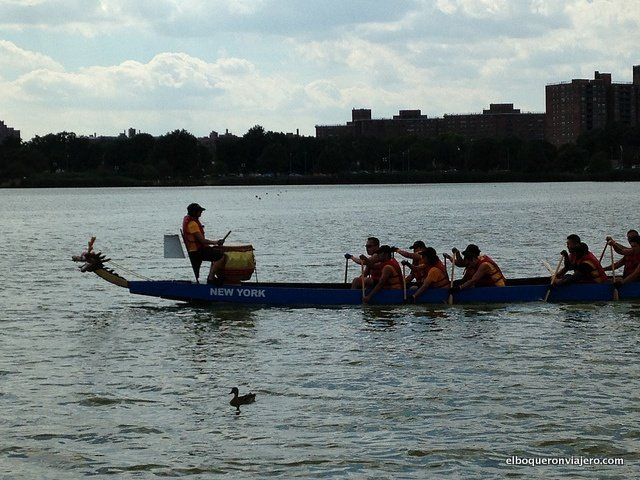 Dragon Boat Festival en Queens