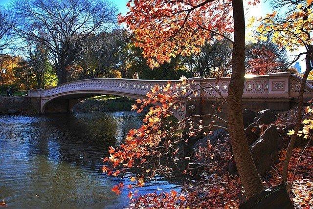 Puente Bow en Central Park
