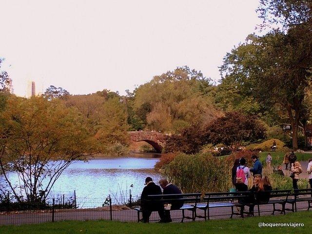 Disfrutando de Central Park en otoño