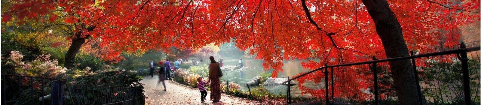 Quiz NY: ¿Cuántos parques de NY eres capaz de reconocer?