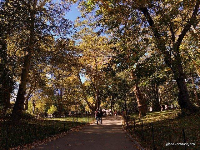Paseando por Central Park en otoño