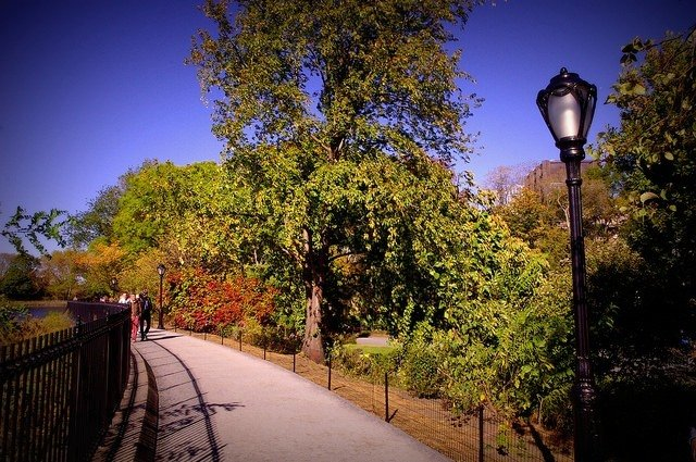 Vivir en otoño en Nueva York