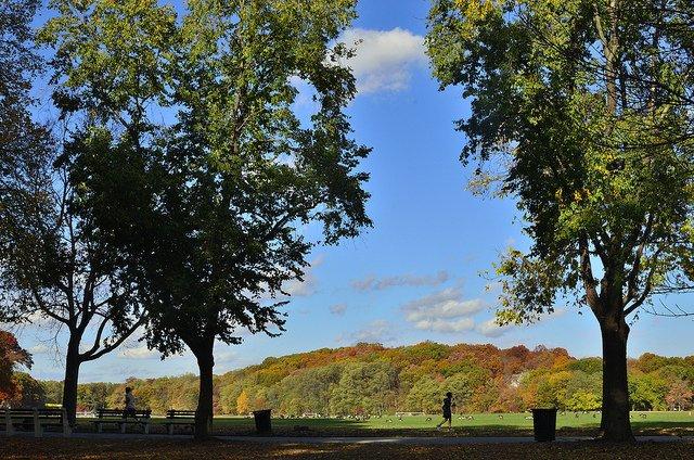 Parque Van Cortlandt El Bronx