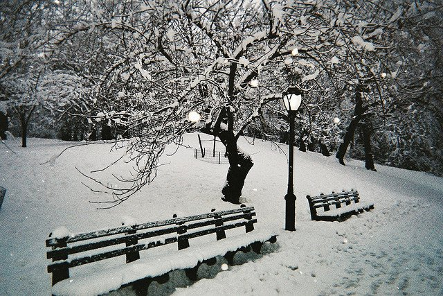 Central Park nevado en Nueva York