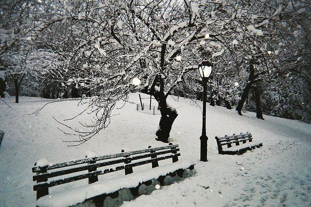 Central Park nevado en Nueva York