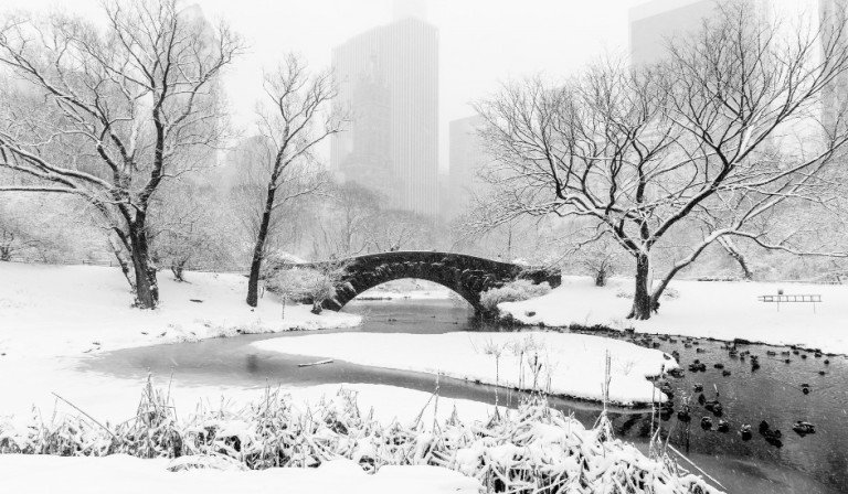 Pasear por Central Park es una de las cosas que hacer en Nueva York en la nieve.