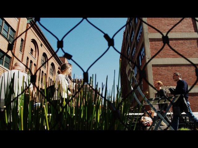 Un paseo en el High Line es un plan perfecto y barato en Nueva York.