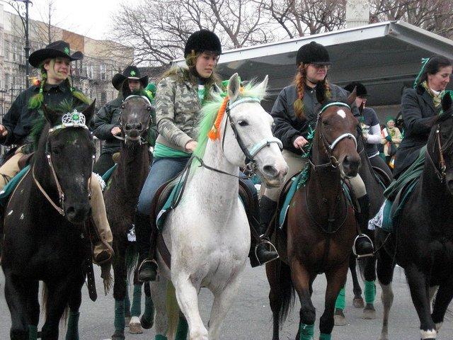 Caballos en el desfile de Brooklyn para el día de San Patricio en Nueva York