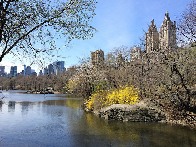 Central Park en Nueva York en abril