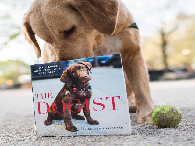 Esta semana en Nueva York puedes celebrar el libro The Dogist con tu mascota