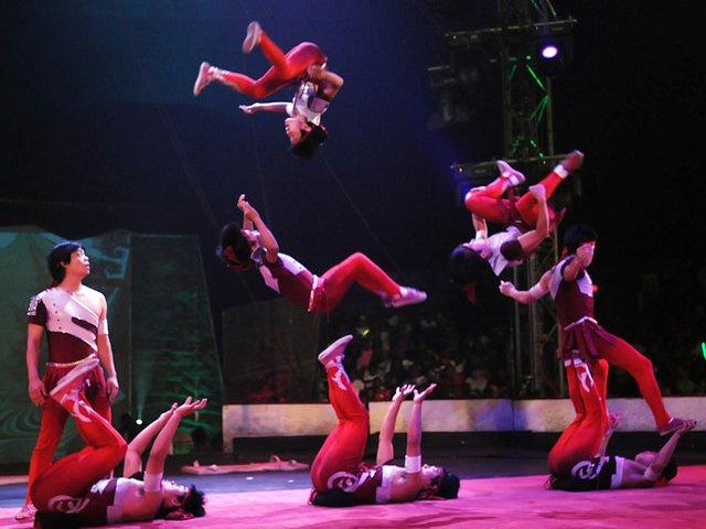 Esta semana en Nueva York se puede ver el Circo Universoul