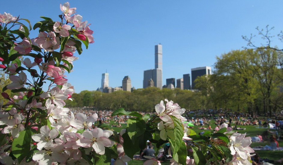 Qué Hacer Nueva York en Primavera.