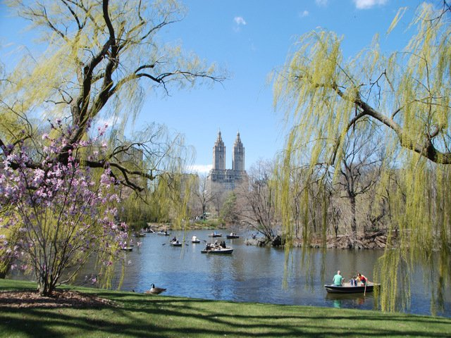 Si visitas Nueva York en primavera es obligatorio pasear por Central Park