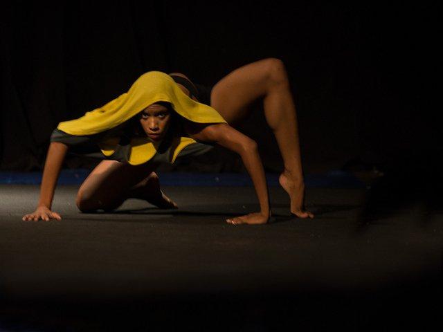 Esta semana en Nueva York la danza de la araña