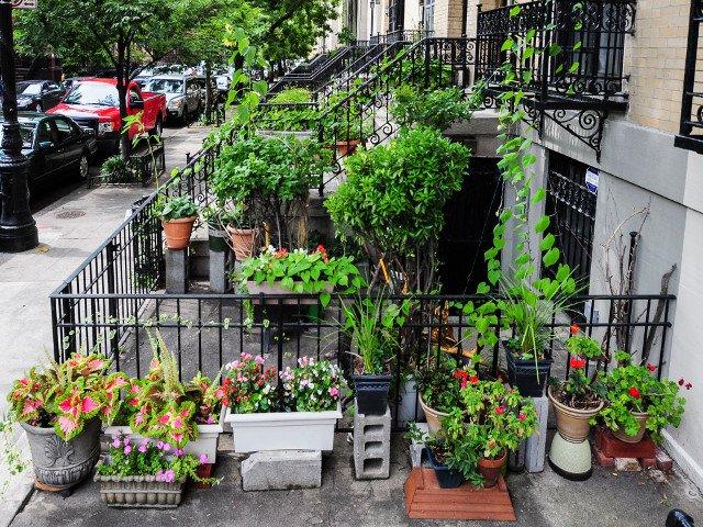 Jardines en Harlem