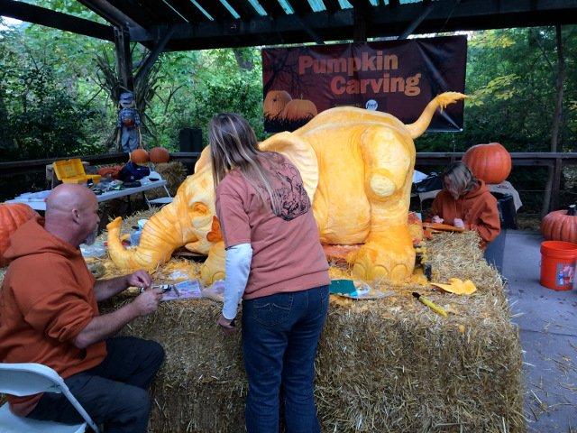 Esta semana en Nueva York Halloween en el Bronx Zoo