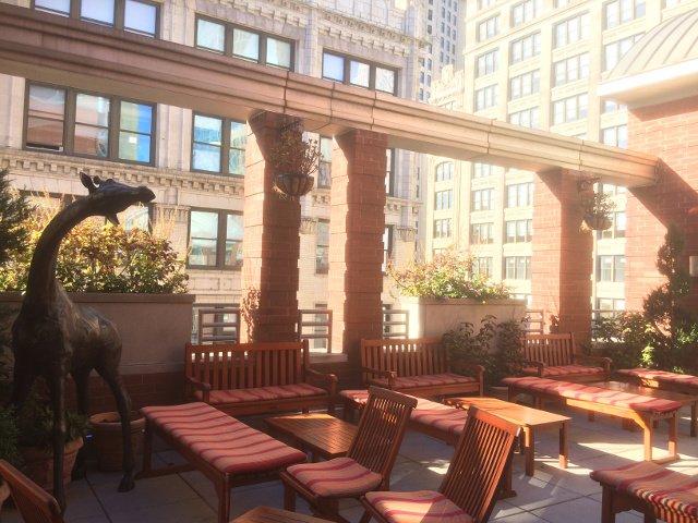 Jardín de la azotea en el hotel