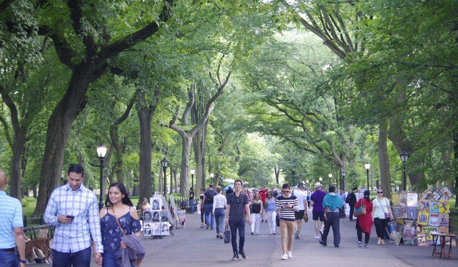 Resultado de imagen para central park new york verano