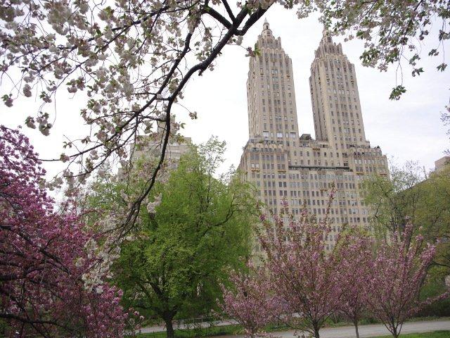 Central Park en primavera Nueva York