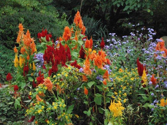 Jardin Botanico de Flushing Queens
