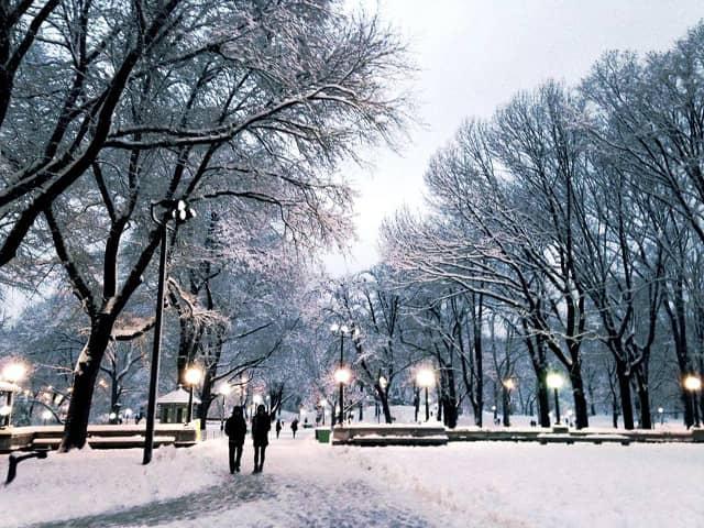 Central Park en invierno