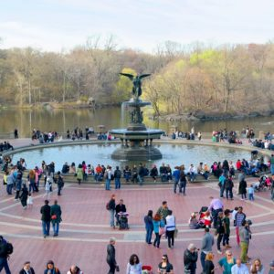 Tour Cine y TV en Central Park