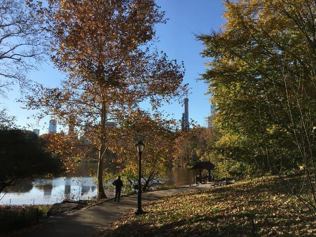 Visitar Nueva York en noviembre
